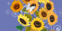 Celebrate their birthday with the warmth of a bouquet of sunflowers.